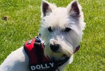 Read more about Michele and Dolly walk the Wall – there and back!
